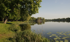 Lake Miejskie [Municipal Lake]